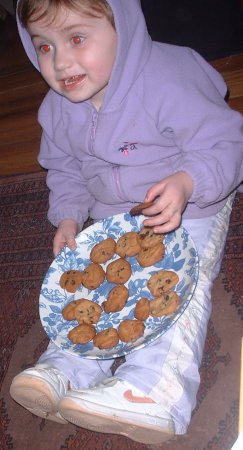 Joesefina sitting down to a nice meal of cookies