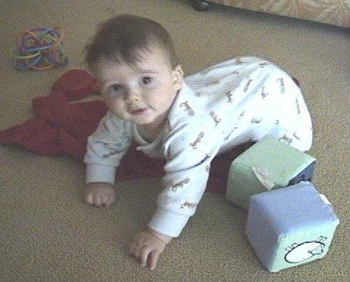 Sean getting ready to crawl