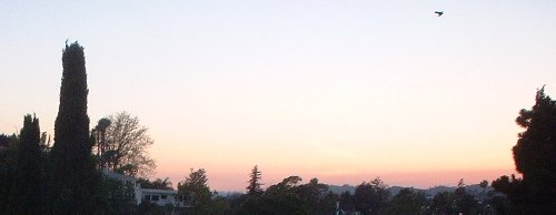 sunset051202.jpg